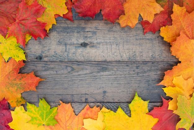 Jesień tło z kolorowych liści klonu na podłoże drewniane.