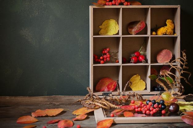Jesień tło z liści i jagód