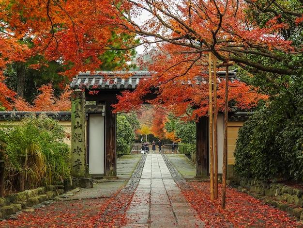 Jesień w kioto