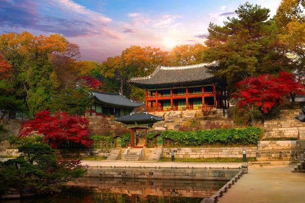 Jesień w pałacu changdeokgung w seulu w korei południowej