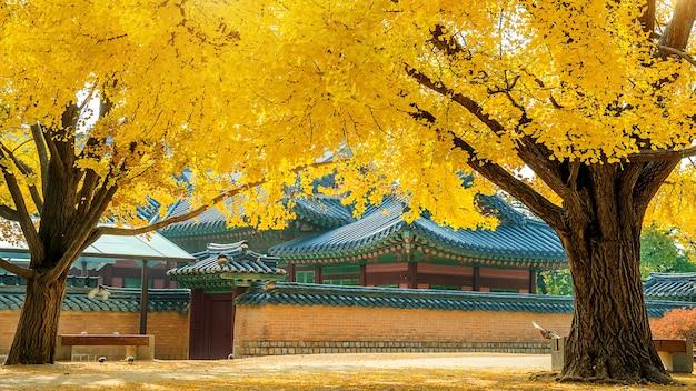 Jesień w pałacu gyeongbokgung w korei południowej