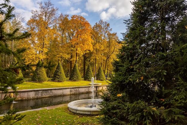 Jesień w parku pałacowym w peterhofie, sankt petersburg, rosja
