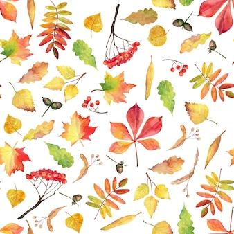 Jesień wzór. liście akwarela.