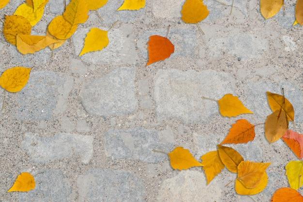 Jesień żółte liście na szary stary kamienny bruk widok z góry