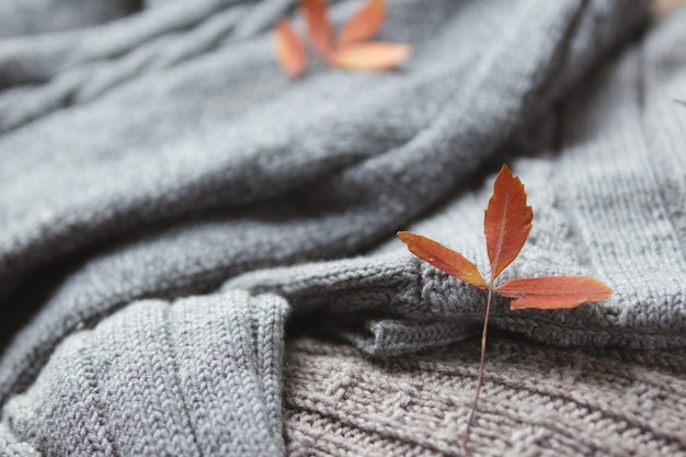 Jesieni ciepły wygodny domowy tło. minimalistyczne dzianinowe swetry zimowe i jesienne liście pomarańczy