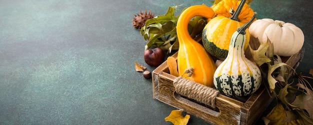 Jesieni dyniowy dziękczynienia tło