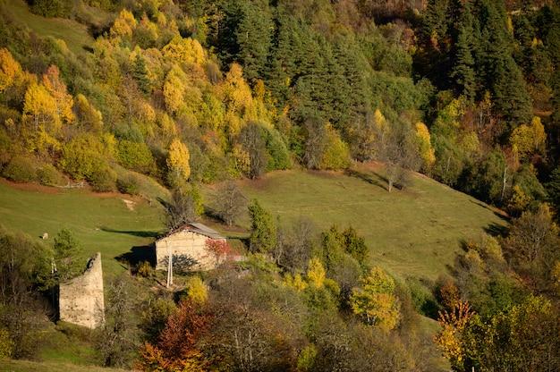 Jesieni góra i las przy heshkili budą savaneti, gruzja.