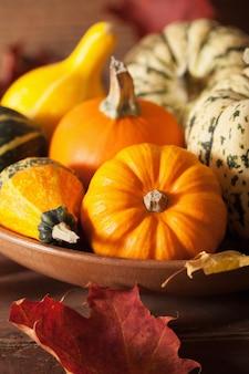 Jesieni halloween banie na drewnianym tle
