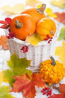 Jesieni halloween dekoracyjne banie w koszu