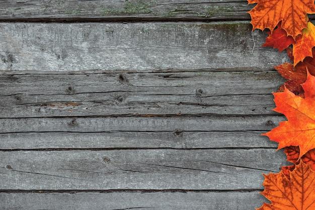 Jesieni tło z kolorowymi spadków liśćmi klonowymi na nieociosanym drewnianym stole z miejscem dla teksta.