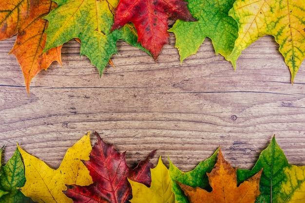 Jesieni tło z kolorowymi spadków liśćmi klonowymi na nieociosanym drewnianym stole