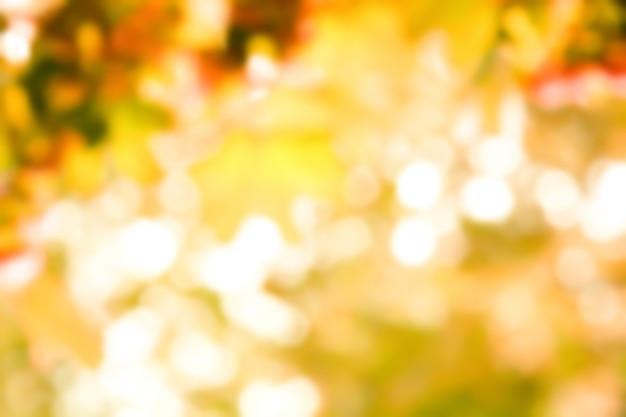 Jesienią rozmyj czerwone liście klonu na gałązce. liście klonu czerwonego.