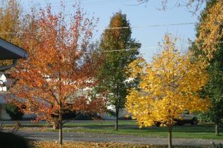 Jesienią w stanie ohio
