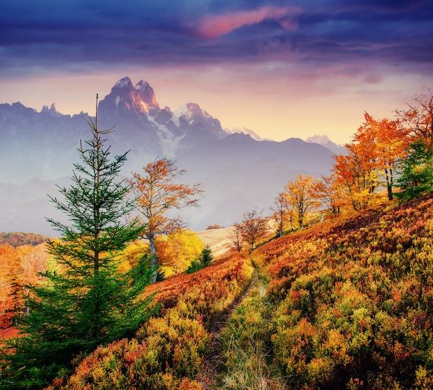Jesienna aleja. fantastyczne chmury cumulus, dramatyczne niebo. zachód słońca.
