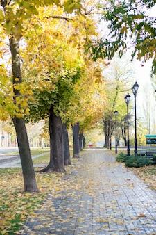 Jesienna aleja w parku, żółte liście na drzewach w porze deszczowej, latarnie uliczne