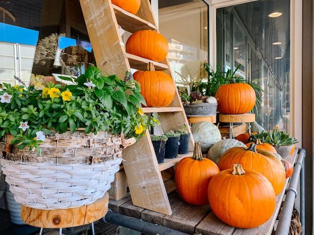 Jesienna dekoracja na halloween w święto dziękczynienia z pomarańczowymi dyniami i kwiatami