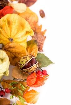 Jesienna dekoracja ułożona z suchych liści, dyni i nie tylko, na białym, szerokim formacie