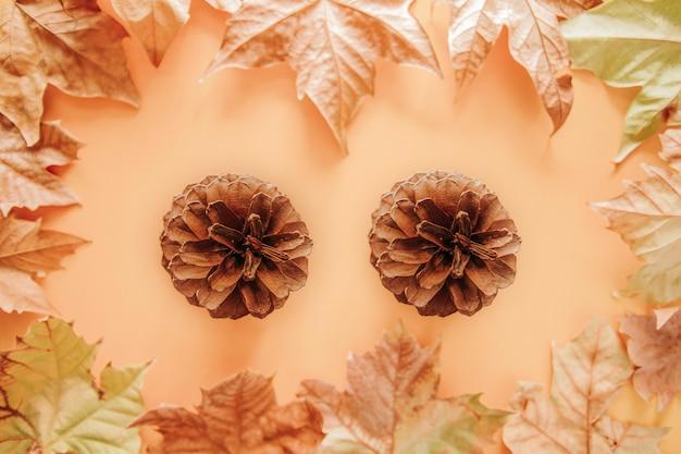 Jesienna dekoracja z dwoma szyszkami i kolorowymi liśćmi klonu