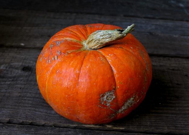 Jesienna dynia rustykalna