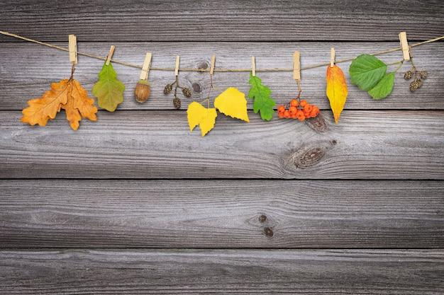 Jesienna girlanda z liści i roślin wisząca na spinaczach do bielizny na drewnianym tle