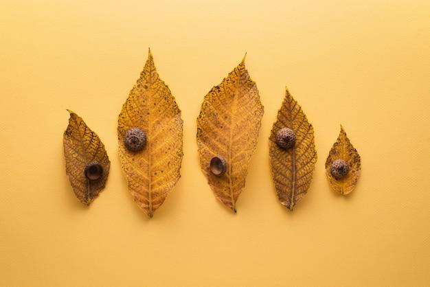 Jesienna kartka z kompozycją opadłych liści na żółtym tle