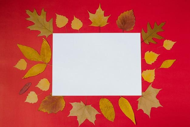 Jesienna kartka z życzeniami biała makieta arkusza papieru z dekoracją liści