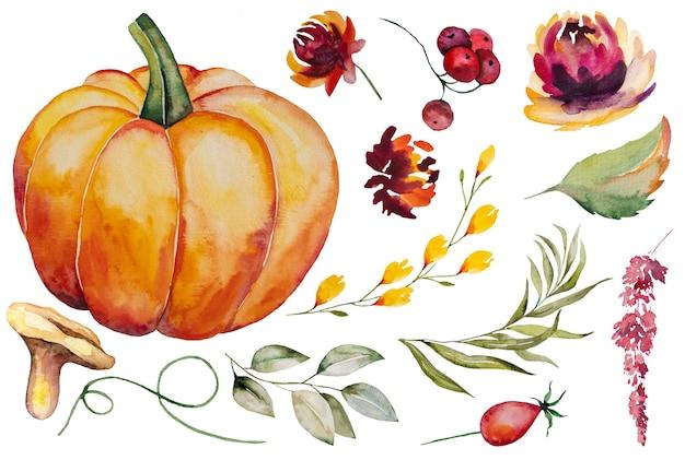 Jesienna kolekcja akwareli z dynią, liśćmi, jagodami, grzybami i kwiatami na białym tle zestaw