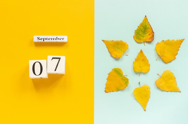 Jesienna kompozycja. drewniany kalendarz 7 września i żółte jesienne liście na żółtym niebieskim tle