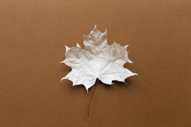 Jesienna kompozycja klonowy biały liść na ziemistym brązowym tle koncepcja jesiennej jesieni płaski widok z góry