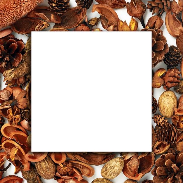 Jesienna kompozycja, kolaż, biały papier, drewno, suszone kwiaty i pąki na białym tle