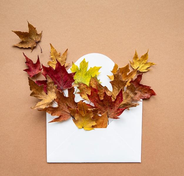 Jesienna kompozycja. koperta z suszonymi liśćmi na pastelowy brąz. koncepcja jesień, jesień. widok płaski, widok z góry.