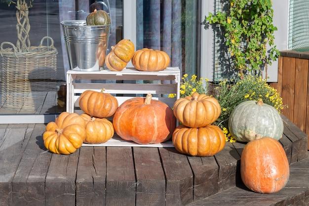 Jesienna kompozycja na zewnątrz z dyniami i kwiatami na halloween