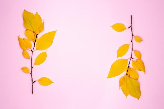 Jesienna kompozycja, rama z liści. dwie gałęzie z żółtymi liśćmi, śliwka. leżał płasko, widok z góry, miejsce