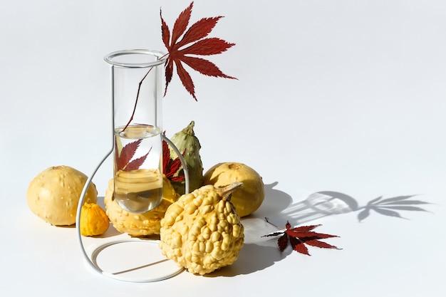 Jesienna kompozycja sezonowa z żółtymi dekoracyjnymi dyniami, tykwami