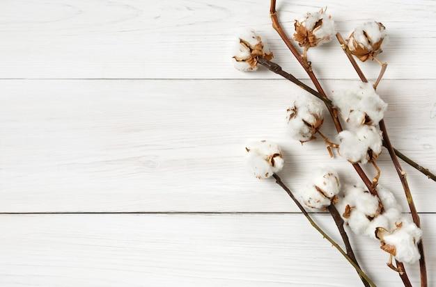 Jesienna kompozycja. widok z góry suszonego białego puszystego kwiatu bawełny na białym drewnie. kompozycja kwiatowa