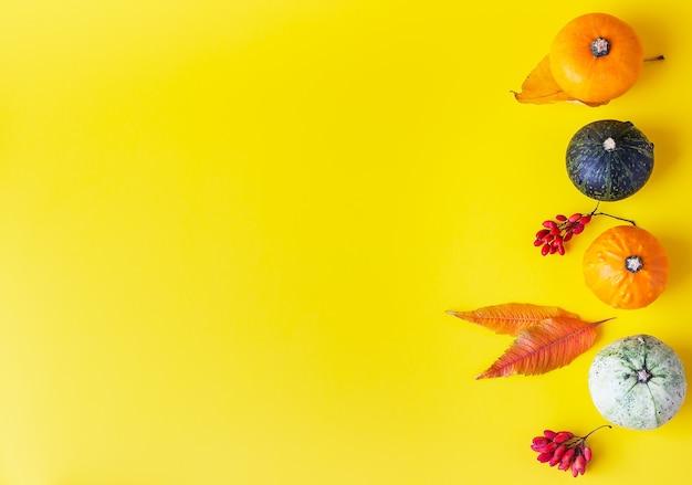 Jesienna kompozycja z dyni, jesiennych liści i jagód na żółtym tle.