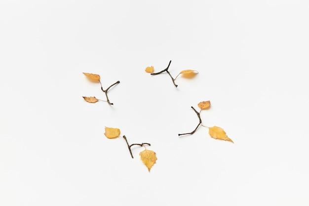 Jesienna kompozycja z gałązkami i żółtymi liśćmi na białym tle, kopia przestrzeń