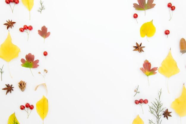 Jesienna kompozycja z liści na białym tle