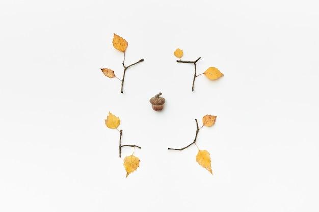 Jesienna kompozycja z żołędziami, gałązkami i żółtymi liśćmi na białym, flatlay