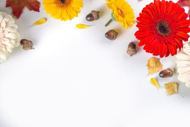Jesienna koncepcja tematu. płaska kompozycja świecka z kolorowymi kwiatami, czerwonymi żółtymi liśćmi, białymi dyniami na białym tle. jasna jesień, koncepcja dzień dziękczynienia. płaski układanie, widok z góry, kopia przestrzeń