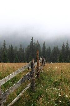 Jesienna łąka ze starym drewnianym płotem na farmie z bliska