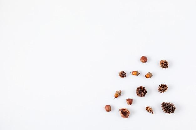 Jesienna płaska kompozycja z szyszek i orzechów na białym tle