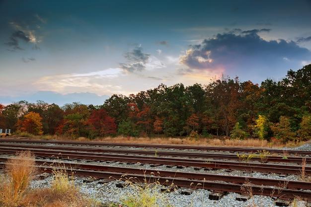 Jesienna przyroda. pochmurny widok na naturalny krajobraz.