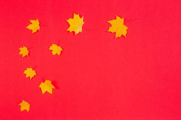 Jesienna rama kompozycji wykonana z jesiennych liści klonu na czerwonym tle
