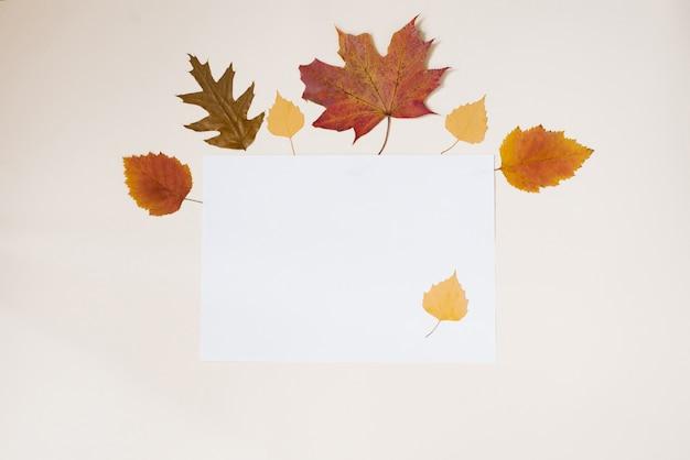 Jesienna rama suchych żółtych liści na białym tle. leżał płasko. skopiuj miejsce.