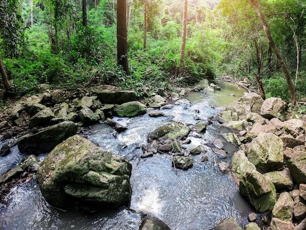 Jesienna scena strumień wodospadu