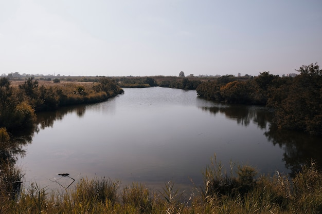 Jesienna sceneria z rzeką