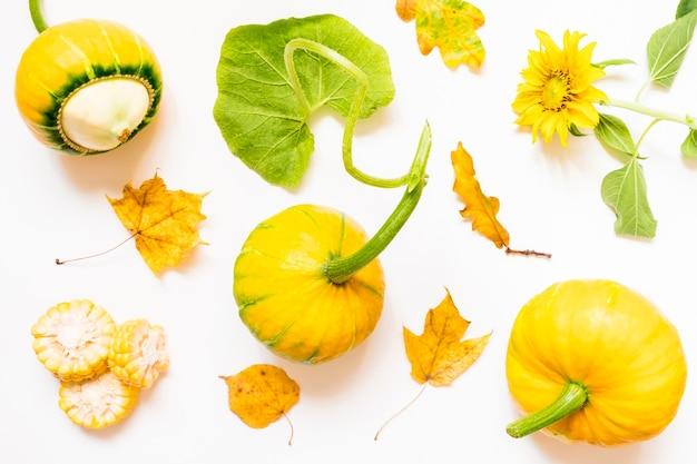Jesienna uprawa z dębowymi liśćmi i dyniami
