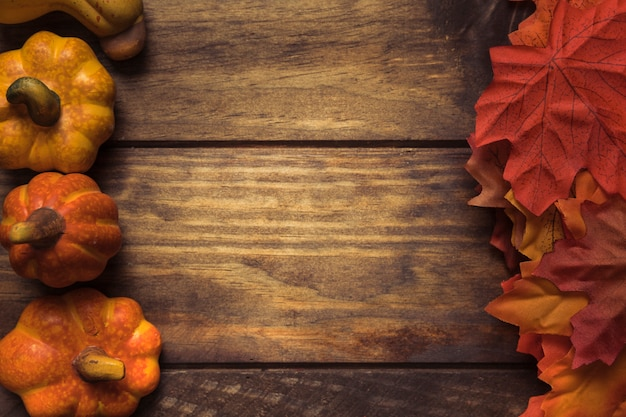 Jesienne dynie i skład liści klonu