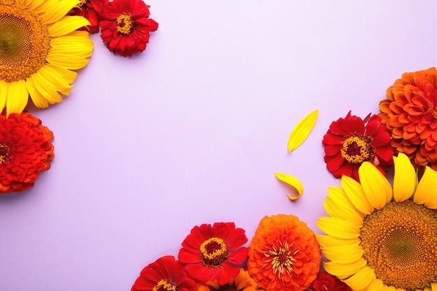 Jesienne kompozycje kwiatowe ze słoneczników, liści i kwiatów na fioletowym tle, widok z góry. kreatywna kompozycja. widok z góry